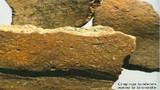 ostanki posode iz bronaste dobe  Foto France Stele, 2007