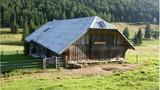 Planina DOL je križišče med Veliko planino, Planino Konj, Konjščico in Kamniško Bistrico