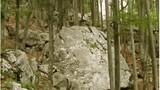 Na začetkih planinskih vzponov iz Kamniške Bistrice planinci srečujejo balvane, orjaške skale, ki so se zaradi erozije privalile z gora.