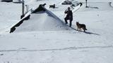 Pašno naselje zasuto s snegom