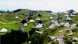 Bela in zelena podoba pastirskega naselja. Beli pripadajo bajtariji, zeleni pastirji, turisti pa obema.